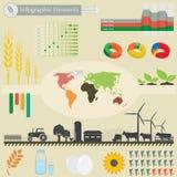 Infographic beståndsdelar Arkivbilder