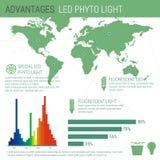 Infographic beståndsdelar LEDDE lampan Royaltyfri Illustrationer