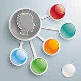 Infographic Big And 5 Small Buttons Head Royalty Free Stock Photo