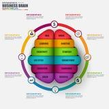 Infographic brain vector design template Stock Photo