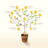Infographic business money plant and coins flat line idea. Vecto Stock Photo