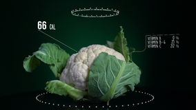 Infographic of Cauliflower with vitamins, microelements minerals. Energy, calorie and component stock video