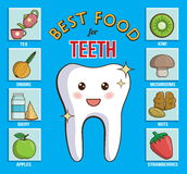 Infographic chart for dental and health care. It shows best food products for teeth, gums and enamel. Dairy, fruit, nuts, vegetabl. Es Vector Illustration