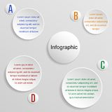 Infographic - circles, white Royalty Free Stock Photo