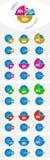 infographic cirkeldiagram Arkivbild