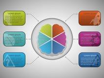 Infographic con el cerebro Imagen de archivo