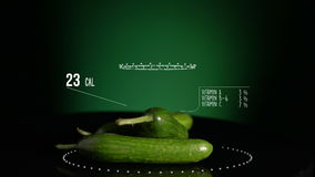 Infographic of Cucumber with vitamins, microelements minerals. Energy, calorie and component stock video footage