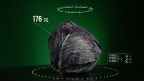 Infographic Czerwona kapusta z witaminami, mikroelement kopaliny Energia, kaloria i składnik, zdjęcie wideo