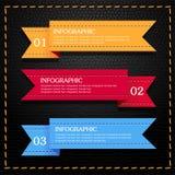 Infographic de cuero Imagen de archivo libre de regalías