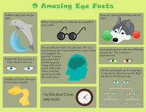 Infographic eye facts Royalty Free Stock Images