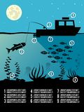 Infographic fishing poster Stock Photo