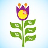 Infographic Flow Chart Flower Tulip Royalty Free Stock Photography