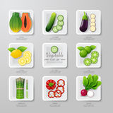 Infographic food vegetables flat lay idea. Vector illustration Stock Images