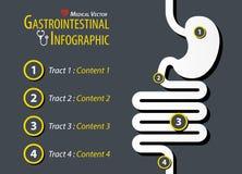 Infographic gastrointestinal Diseño plano libre illustration