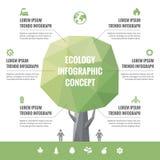 Infographic-Geschäfts-Konzept von Ökologie mit Ikonen Stockbilder