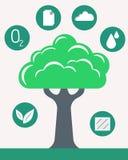 Infographic green tree. Of ECO Stock Photo