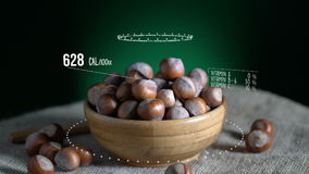 Infographic of Hazelnut with vitamins, microelements minerals. Energy, calorie and component stock footage
