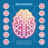 Infographic hersenen - vectorconceptenillustratie met pictogrammen Linker en juiste menselijke hersenen vectorillustratie voor pr royalty-vrije illustratie