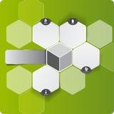 Infographic Hintergrund des abstrakten Vektorgrüns Stockbild