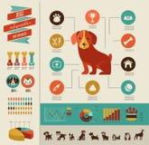 Infographic hundkapplöpning och symbolsuppsättning Royaltyfri Bild