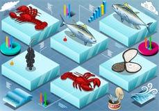Infographic isometrico di Marine Life Fotografia Stock Libera da Diritti