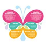 Infographic-Konzept - abstrakter Hintergrund - kreative Vektor-Illustration des Schmetterlings-Schattenbildes Lizenzfreies Stockfoto