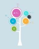 Infographic-Kreis-Aufkleberdesign mit abstraktem Baumwachstums-Baumkonzept Lizenzfreies Stockbild
