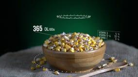 Infographic kukurydza z witaminami, mikroelement kopaliny Energia, kaloria i składnik, zdjęcie wideo