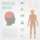 Infographic läkarundersökning och sjukvård, hjärninfographics Royaltyfria Bilder
