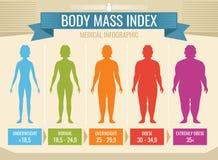 Infographic médico del vector del índice de masa corporal de la mujer ilustración del vector