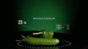 Infographic ogórek z witaminami, mikroelement kopaliny Energia, kaloria i składnik, ilustracja wektor