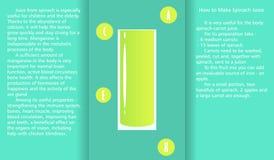 Infographic om den välgörande rekvisitan av spenatfruktsaft och en metod av att förbereda fruktsaft Arkivbild