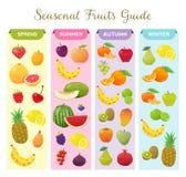 Infographic om säsongsbetonade frukter Arkivfoto