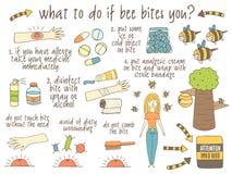 Infographic om vad som ska göras, om biet biter dig Arkivbilder