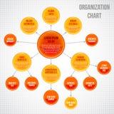 Infographic organisatoriskt diagram Arkivbild