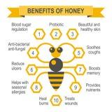 Infographic Plakat des gesunden Honigs Lizenzfreie Stockfotos