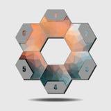 Infographic poligonalbeståndsdelar, 6 sexhörningar Royaltyfria Foton