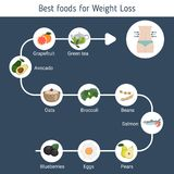 Best Foods for weight loss. Infographic presentation best foods for weight loss. Infographic with food icons. Health food Royalty Free Stock Photos