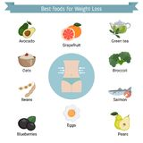 Best Foods for weight loss. Infographic presentation best foods for weight loss. Infographic with food icons. Health food Royalty Free Stock Image