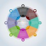 Infographic Schablone des Kreises Lizenzfreie Stockbilder