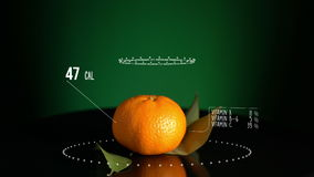 Infographic of Tangerine with vitamins, microelements minerals. Energy, calorie and component stock video footage
