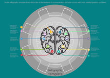 Vector Infographic template brain of the idea of the business of communication for Aqua success with lines, colorful graphics Stock Image