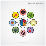Infographic template creative brain education and science concep Stock Photo