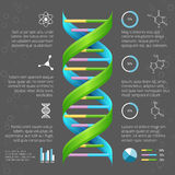 Infographic template with DNA structure for vector illustration