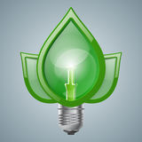 Infographic template. Eco Bulb, Light, leaf, icon. Stock Image