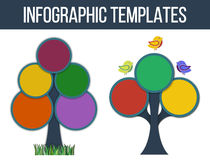 Infographic templates in form of tree Stock Image