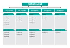 Infographic tree diagram management categories division subdivision timeline royalty free illustration