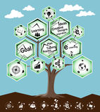 Infographic tree learning concept Royalty Free Stock Photo