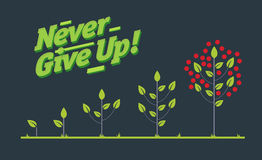 Infographic vector creatieve affiche van de cyclus van het boomleven Stock Afbeelding