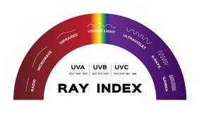 Infographic vektor för Ray index radiosända röntgenstrålar och gamma för synligt ljus för mikrovåg infraröda ultravioletta royaltyfri illustrationer